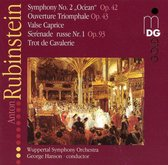 Orchestral Music Vol.2: Symphony Nr