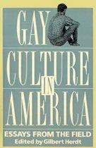 Gay Culture In America