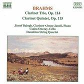 Brahms: Clarinet Trio & Quintet / Bologh, Danubius Qt