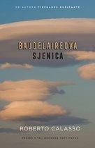 Baudelaireova sjenica