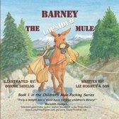 Barney the Lopsided Mule