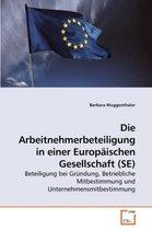 Die Arbeitnehmerbeteiligung in Einer Europaischen Gesellschaft (Se)