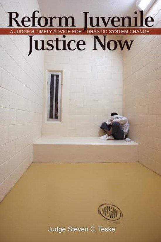 Boek cover Reform Juvenile Justice Now: A Judges Timely Advice for Drastic System Change van Steven C. Teske (Onbekend)
