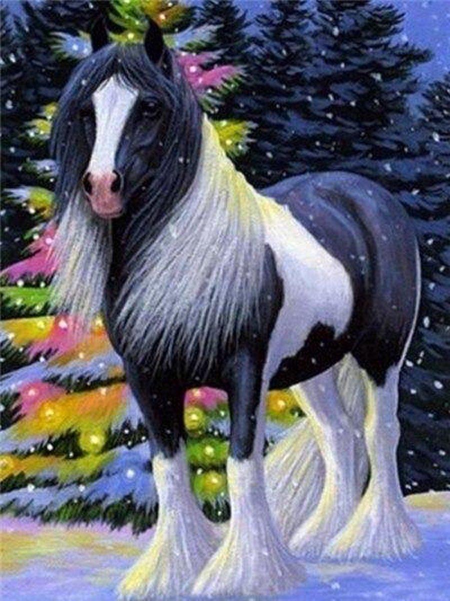 Premium Paintings - Tinker Paard - Diamond Painting Volwassenen - Pakket Volledig / Pakket Full - 30x40 - Moederdag cadeautje