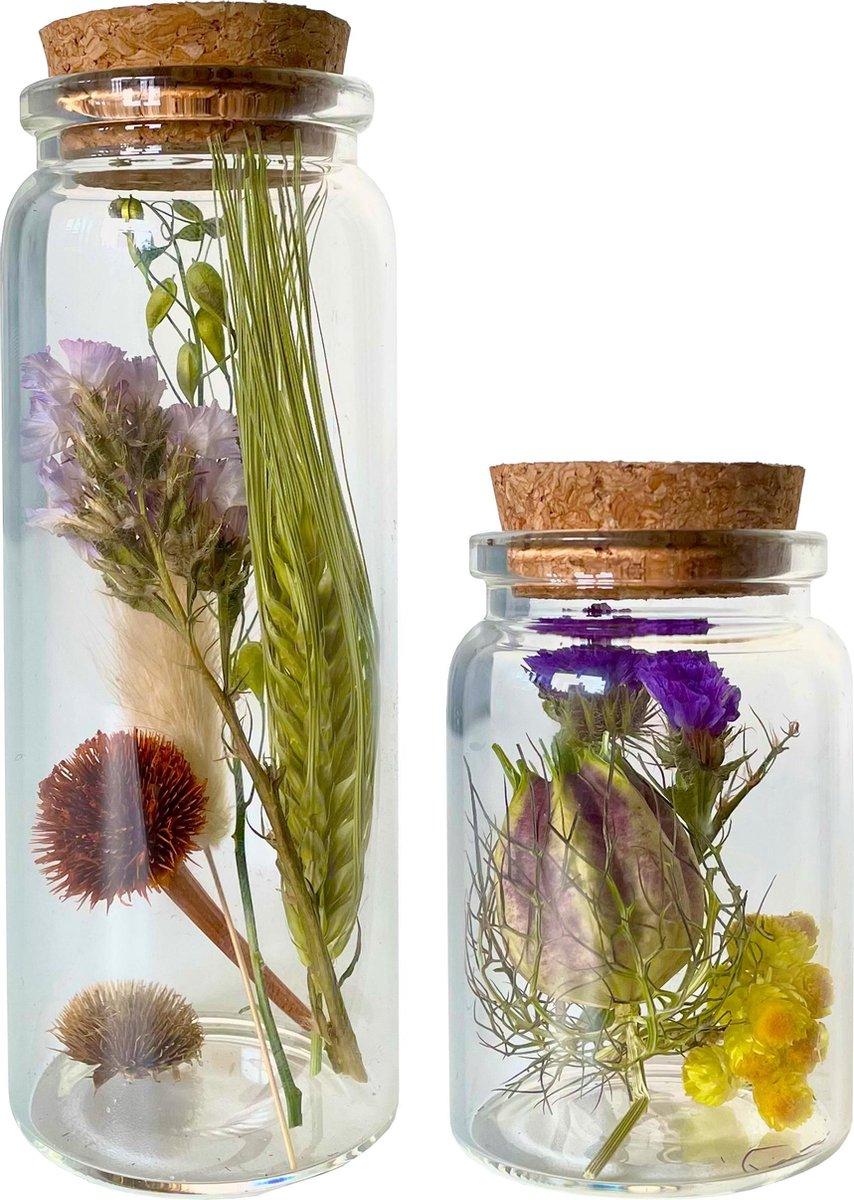 Droogbloemen in glas met kruk   Set van 2 glazen flesjes   Dried flowers   Gedroogde bloemen   Groot
