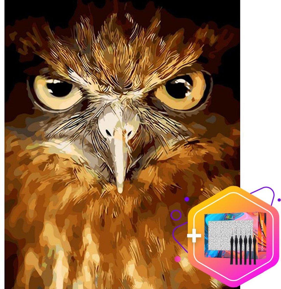 Pcasso ® Uil Realistisch - Schilderen Op Nummer - Incl. 6 Ergonomische Penselen En Geschenkverpakking - Schilderen Op Nummer Dieren - Schilderen Op Nummer Volwassenen - Canvas Schilderdoek - Kleuren Op Nummer - 40x50 cm