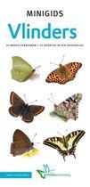 Minigids  -   Set Minigids Vlinders