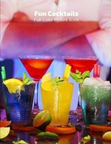 Fun Cocktails Full-Color Picture Book