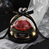 Onsterfelijke roos in glas/stolp | Decoratie | Het perfecte moederdagcadeau!