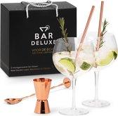 Gin Tonic Glazen Set - BarDeluxe® - 2 Stuks - Handgeblazen - Inclusief Gin Tonic Lepel, Maatbeker en 2 RVS Rietjes - Luxe Verpakking