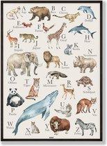 BONT Alfabetposter dieren - Nederlands - 50x70