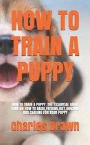 How to Train a Puppy: How to Train a Puppy