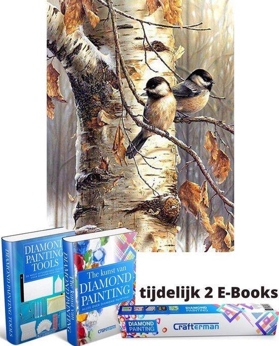 Crafterman™ Diamond Painting Pakket Volwassenen - Vogels in de Boom - natuur - 30x40cm - volledige bedekking - RONDE steentjes - Met 2 E-books