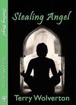 Stealing Angel