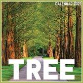 Tree Calendar 2021
