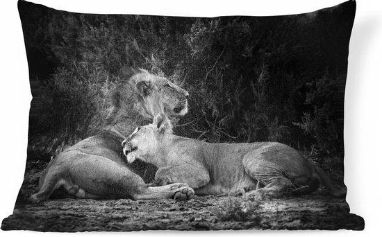 Sierkussens - Kussen - Leeuw en leeuwin - 50x30 cm - Kussen van katoen