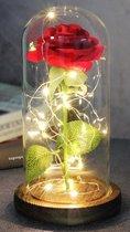 SassyGoods® Beauty and the Beast Zijde Roos in Glas Stolp Rose Kunstroos Valentijn | Cadeau voor Vrouw | Vriendin | Mama | Oma | Valentijnsdag | Belle en het Beest | Glazen | Rood - 22CM