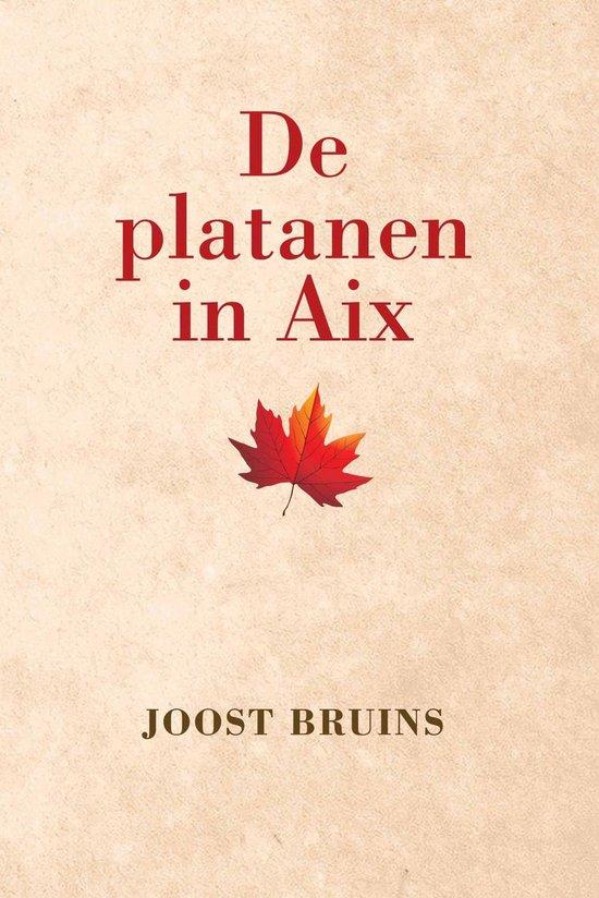 De platanen in Aix - Joost Bruins |