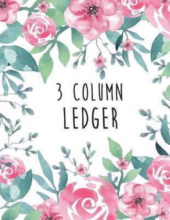 3 Column Ledger