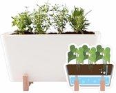 WaterWick Plastic PlantBox wit 19 x 13,5 x 15 cm (lxbxh)(zonder zaadjes)