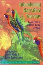 Introducing Narrative Therapy - Practice-Based Writings