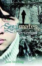 Boek cover Soulmates - Het verhaal van Sky van Joss Stirling