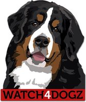 Berner sennenhond sticker (set van 2 stickers)