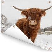 Schotse hooglander in de winter Tuinposter 100x100 cm - Tuindoek / Buitencanvas / Schilderijen voor buiten (tuin decoratie)