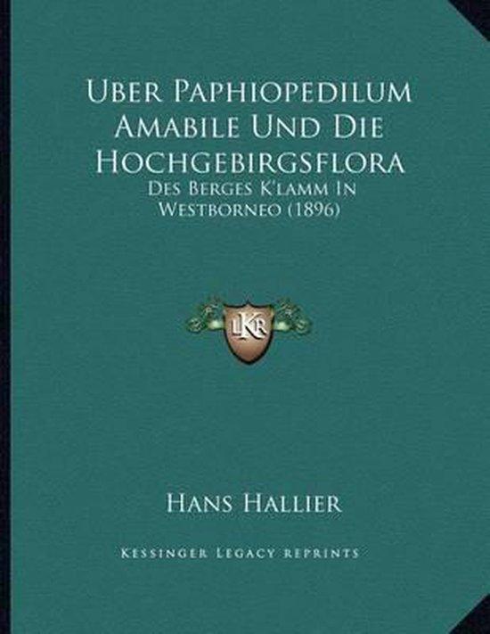 Uber Paphiopedilum Amabile Und Die Hochgebirgsflora