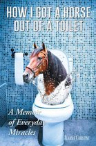 How I Got a Horse Out of a Toilet: A Memoir of Everyday Miracles