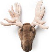 Dierenkop Trophy Eland Alfred | Wild & Soft