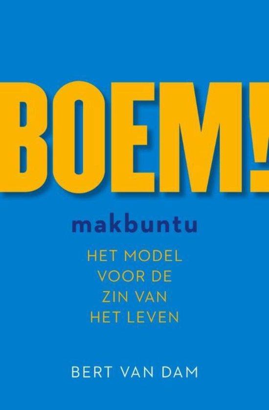 BOEM! - Bert van Dam pdf epub