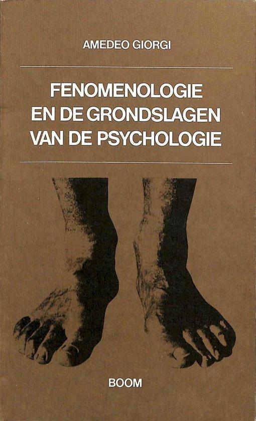 Fenomenologie en de grondslagen van de psychologie - Th. De Boer |