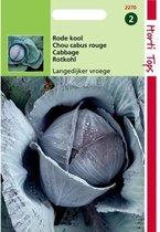 Rode kool Langedijker vroege -  Brassica oleracea - set van 8 stuks