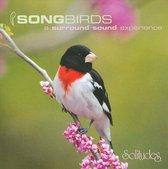 Songbirds [Solitudes]