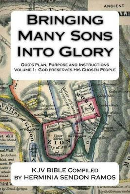 Bringing Many Sons Into Glory