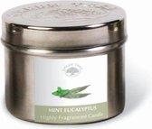 Green Tree Geurkaars Mint Eucalyptus (150 gram)