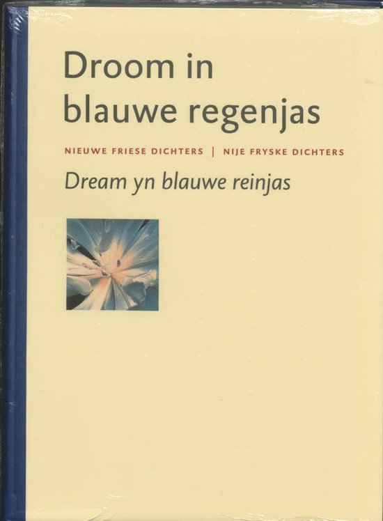 Droom in blauwe regenjas/ Dream yn blauwe reinjas - Tsead Bruinja | Readingchampions.org.uk