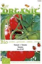 Buzzy® Organic Tomaten Ace 55VF (BIO)