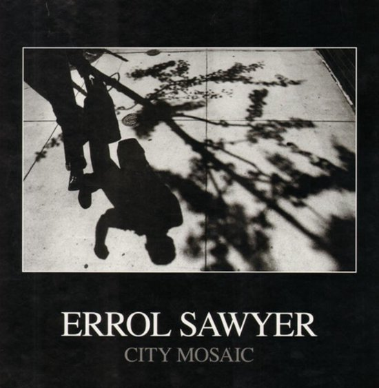 Errol Sawyer - City Mosaic