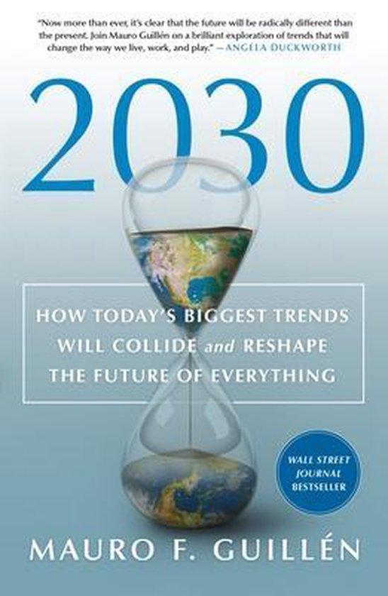 Boek cover 2030 van Mauro F Guillen (Paperback)