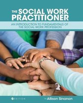 The Social Work Practitioner