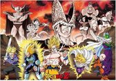 Dragon Ball Poster Group Cell Arc (98X68)