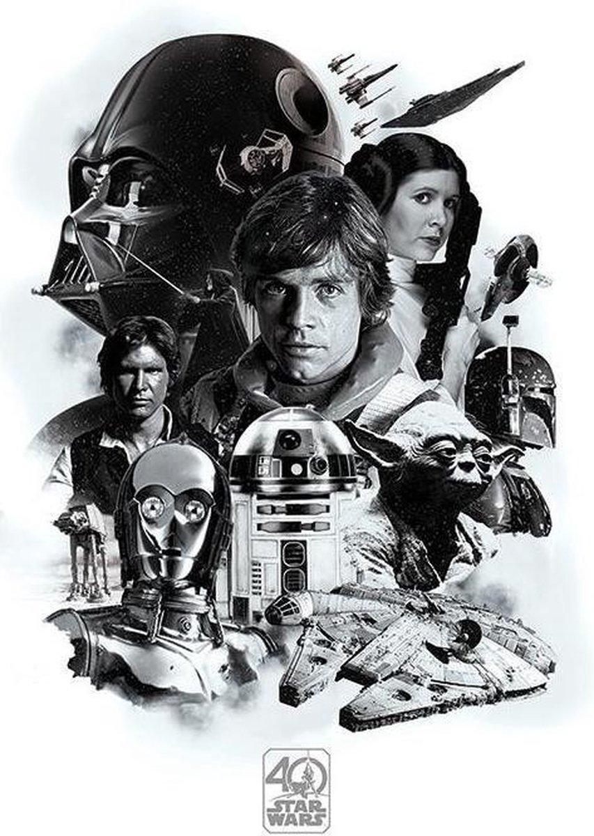 STAR WARS - Poster 61X91 - 40th Anniversary Montage