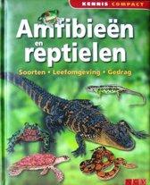 Amfibieen en Reptielen ( soorten , leefomgeving , gedrag )