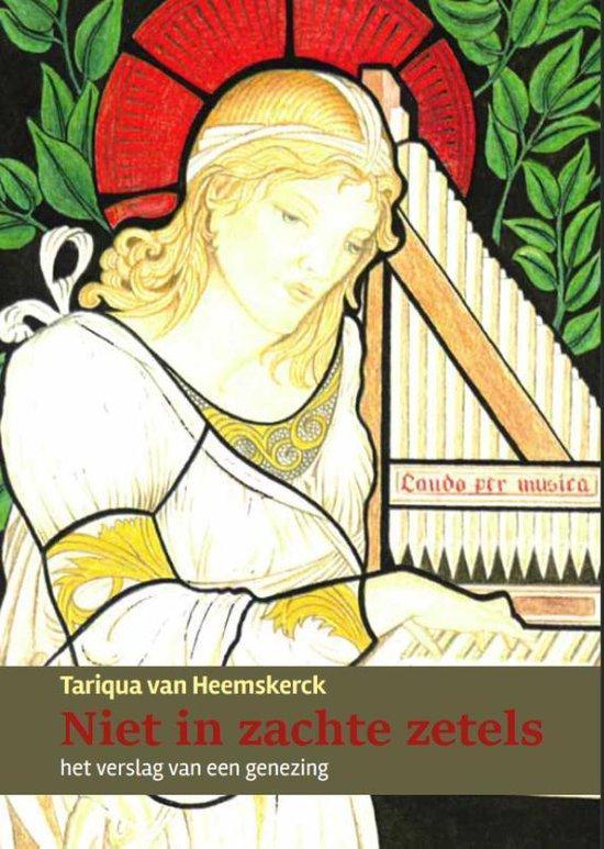 Niet in zachte zetels - Tariqua van Heemskerck |