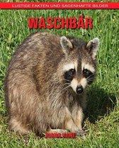Waschb�r: Lustige Fakten und sagenhafte Bilder
