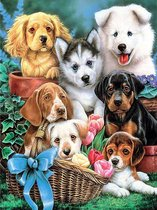 Rubye® Diamond Painting Volwassenen - Diamond Painting Kinderen - Schattige Puppy's - 30x40cm
