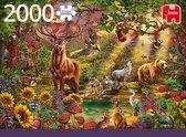 Puzzel - Magische Woud bij Zonsondergang - 2000 stukjes - Limited