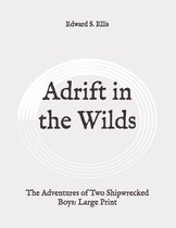 Adrift in the Wilds: The Adventures of Two Shipwrecked Boys
